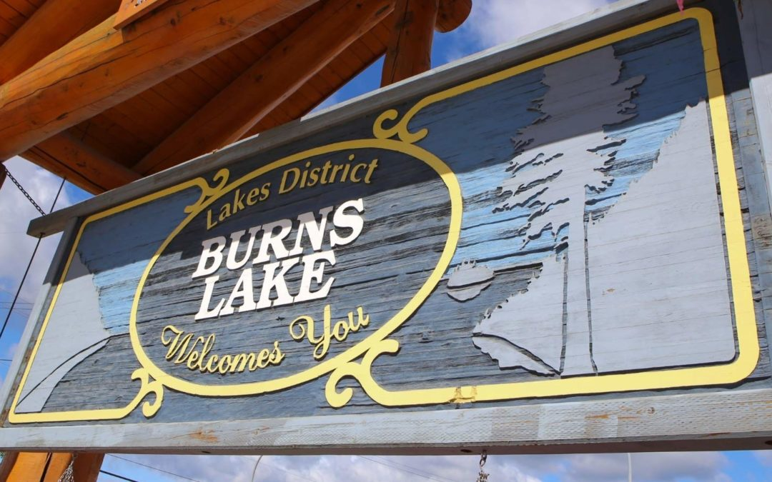 Where do I find a business licence application for the Village of Burns Lake?